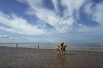 Horse riders galloping along a sandy beach. - Paul Carter - 12-07-2000