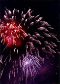 Fireworks lighting up the night sky during a Public display. - Paul Carter - 02-11-1996
