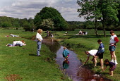 Families paddling and fishing in a stream in the New Forest. - Paul Carter - 31-05-1994