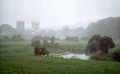 Sheep grazing in a pasture next to the River Stour with church bell towers in Wimbourne Minster, Dorset in the background. - Paul Carter - 10-10-2001
