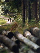 Two women walking a dog in The New Forest. - Paul Carter - 24-05-1994