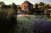Water mill on the River Stour. - Paul Carter - 15-08-1984
