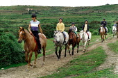 Pony trekkers riding across heathland. - Paul Carter - 1980s,1988,animal,animals,bridleway,CHILD,CHILDHOOD,children,country,countryside,domesticated ungulate,domesticated ungulates,enjoying,enjoyment,equestrian,equine,exercise,exercises,fun,group,groups,h