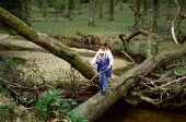 Young girl water divining whilst walking along a tree that has fallen across a river. The New Forest, Hampshire. - Paul Carter - 15-04-1989