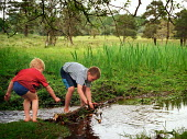 Two young boys building a dam across a stream, The New Forest, Hampshire. - Paul Carter - 01-06-2002