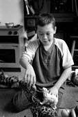 Young boy playing with toy animals. - Paul Carter - 13-09-2001