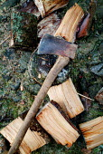 An axe lying on a chopping block, surrounded by logs cut for firewood. - Paul Carter - 2000s,2003,blade,chopped,chopping,cut,cutting,DIY,ENI environmental issues,environment,fire,fires,fuel,job,jobs,lab lbr work,log,logs,lying,people,source,sustainable,tool,tools,TRADITION,traditional,u
