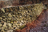 Traditional dry stone wall in the corner of a field, The Lake District. - Paul Carter - 2000s,2003,boundary,country,countryside,craft,dry,EBF economy business & finance,ENV Environmental Issues,environment,FARM,farmed,farmland,field,outdoors,outside,rural,stone,TRADITION,Traditional,wall
