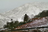 Snow covered hills, the Lake District - Paul Carter - 01-01-2004