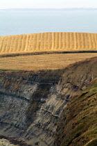 Golden field, crops recently harvested on farmland near to the coast towards Kimmeridge, Dorset. - Paul Carter - 03-08-2004