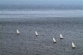 Sailing boats on a still sea.  Near Chapman's Pool and Kimmeridge. Dorset. - Paul Carter - 03-08-2004