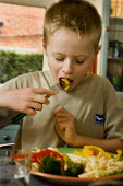 Boy eating healthy food. - Paul Carter - 2000s,2006,balanced,bar,BARS,bite,biting,boy,boys,BREAK,breakfast,broccoli,carrot,cheese,child,CHILDHOOD,children,COLOR,colorful,colorfull,colors,colour,colourful,colours,cucumber,diet,dietary,diets,D