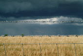 Close up of a section of barbed wire fence surrounding a field. Dark storm clouds cover it.Views from South Downs way near Alfriston, East Sussex - Paul Carter - 04-07-2005