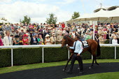 Horses are paraded around by handlers the winners enclosure at Goodwood racecourse. - Justin Tallis - 2010,2010s,BAME,BAMEs,before,bet,bets,betting,Black,BME,bmes,chance,checking,course,courses,diversity,domesticated ungulates,employee,employees,Employment,equestrian,equine,ethnic,ethnicity,event,form