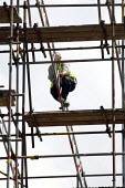Balancing dangerously. Construction workers erecting scaffolding on a mansion house. - Justin Tallis - 23-06-2011