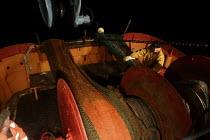 Working through the night on board a fishing trawler in the Irish Sea. The four-man crew work on one of the last remaining trawlers in Fleetwood, Lancashire. - Justin Tallis - ,2000s,2006,at,board,boat,boats,common,crew,crewman,crewmen,crewmenmaritime,dark,EARNINGS,EBF,EBF Economy,Economic,Economy,EQUALITY,fisheries,fisherman,fishermen,fishery,fishing,Fishing Industry,hauli