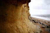 Sandstone eroded by the sea at La Manche near Exmouth. - Justin Tallis - 13-02-2007