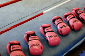 Pink boxing gloves. Times ABC Boxing Club. Islington, London. - Justin Tallis - 2000s,2009,amateur,box,boxer,boxes,boxing,centre,club,clubs,energetic,exercise,exercises,exercising,female,females,fighter,fighters,fit,fitness,getting,girl,girls,gloves,gym,gymnasium,gyms,Islington,k