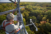 Pellston, Michigan - Dr. Chris Vogel checks instruments on a 150-foot tower above the forest canopy at the University of Michigan Biological Station. Scientists there are studying changes in the abili... - Jim West - 09-10-2008