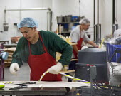 Workers on a production line making confectionary - hard candy at the Hammonds Candies factory, USA. - Jim West - 07-07-2009