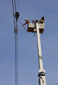 Electricity engineers installing a high voltage power line using a mobile lift platform. - Jim West - 20-04-2010