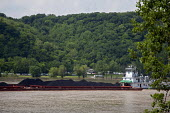 A tugboat pushes barges loaded with coal upstream on the Ohio River. - Jim West - 23-05-2010