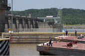 Marathon Oil Company barges enter a lock at the Markland Dam, on the Ohio River. - Jim West - 23-05-2010