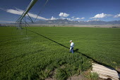 Worker inspects irrigation equipment at a Nevada Cattle Ranch. USA - Jim West - 05-07-2011