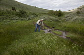 Worker redirects a stream that had been eroding a road back to its natural course. Nevada Sheep Ranch. USA - Jim West - 07-07-2011