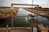 An irrigation ditch branching from the All-American Canal brings water from the Colorado River to irrigate the Imperial Valley. USA. - Jim West - 27-01-2012