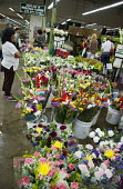 Los Angeles - A shopper in Los Angeles flower market. Most flowers sold in the market are imported. - Jim West - 23-06-2012
