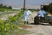 Woodlake, California - Workers in protective clothing apply pesticide to a field in the San Joaquin Valley. - Jim West - American,2010s,2012,agricultural,agriculture,America,American,americans,apparel,BAME,BAMEs,BME,bmes,by hand,California,capitalism,capitalist,casual workers,Central,chemical,chemicals,clothing,crop,cro