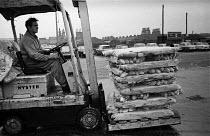 Hull docks 1968