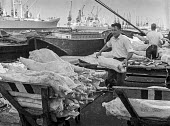 Dock work as it used to be, East India dock, London, before containerisation and just before closure of docks due to containerisation - manhandling frozen New Zealand lamb carcasses piecemeal. - Martin Mayer - 06-07-1970
