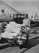 Traditional Dock work as it used to be, East India dock, London, before containerisation - manhandling frozen meat piecemeal - just before containerisation changed dock work for ever - Martin Mayer - 06-07-1970