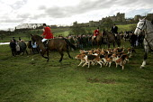 Huntsmen from the Percy Hunt Alnwick, Northumberland. The day after the hunting ban. - Mark Pinder - 2000s,2005,AFFLUENCE,AFFLUENT,animal,animal animals,animals,ban,banned,banning,blood sports,Bourgeoisie,canine,canter,castle,class,country,countryside,dog,dogs,domesticated ungulate,domesticated ungul