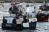 Flotilla of fishing boats as North east Cod fishermen protesting against European regulations which will further restrict fish quotas by up to 79 to protect stocks of cod, haddock and whiting reaching... - Mark Pinder - 2000s,2002,activist,activists,against,boat,boat boats,boats,CAMPAIGN,campaigner,campaigners,CAMPAIGNING,CAMPAIGNS,capitalism,capitalist,CFP,common fisheries policy,crew,crewman,crewmen,crewmenmaritime
