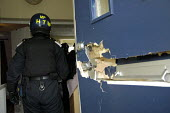 A drugs raid by police in East London. They forced their way into a flat and arrested one person for possession of class A drugs. - Marco Secchi - 2000s,2005,adult,adults,breaking,bust,busted,cannabis,CLJ crime,cocaine,dealer,dealers,dealing,door,doorstep,down,drug,drugs,entering,estate,ESTATES,force,forced,forced entry,forcing,Front Door,heroin