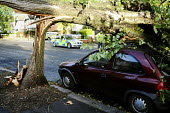 A tree that has fallen onto a parked car. The morning after the storm in Brighton and Hove, East Sussex. - Nick Rain - 2010s,2013,accident,accidental,accidents,AUTO,AUTOMOBILE,AUTOMOBILES,AUTOMOTIVE,autumn,AUTUMNAL,car,cars,CLIMATE,conditions,crushed,damage,damaged,danger,dangerous,dangers,DIA,fallen,falling,gale,gale