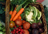 Basket of fresh organic fruit and vegetables. - Paul Carter - 1990s,1999,AGRICULTURAL,Agriculture,APPLE,apples,beetroot,bought,broccoli,brussels sprout,brussels sprouts,buy,buyer,buyers,buying,c,capitalism,capitalist,CARROT,carrots,cauliflower,CAULIFLOWERS,commo