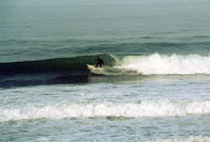 Freshwater West, Pembrokeshire a surfer catches a wave - Paul Box - 2000s,2001,beach,beaches,coast,coastal,coastline,coastlines,coasts,eni environmental issues,exercise,exercises,holiday,holiday maker,holiday makers,holidaymaker,holidaymakers,holidays,LFL leisure,ocea