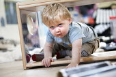 A young boy playing, Norland Nursery, Bath. - Paul Box - 2010s,2012,at,boy,boys,CARE,carer,carers,child,child care,childcare,CHILD-CARE,CHILDHOOD,childminding,children,crawling,CRECH,creche,creches,day care,daycare,EARLY,early years,edu,educate,educating,ed