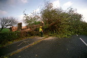 A tree falls on to the road in Clevedon, near Bristol during a storm - Paul Box - 2000s,2002,blown down tree,chainsaw,chainsaws,cities,city,climate change,employee,employees,Employment,europeregi,fallen tree,gale,gale gales,gales,global warming,high winds,highway,job,jobs,lab lbr w