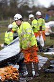 Environment agency work with contractors May Gurney, part of Kier group laying sand bags at Moorland , on the Somerset levels. - Paul Box - 07-02-2014