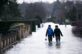 Residents of Wraysbury, Berkshire which has been flooded after the Thames burst its banks wade through flood waters. - Paul Box - 12-02-2014