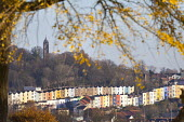 Clifton Wood, Bristol. - Paul Box - 03-12-2014