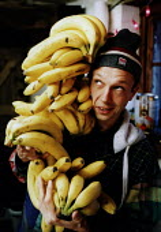 Worker carrying a stack of bananas - Paul Box - 2000s,2003,banana bananas,bought,bunch,bunches,buy,buyer,buyers,buying,carries,carry,carrying,commodities,commodity,consumer,consumers,customer,customers,EBF Economy,employee,employees,Employment,euro
