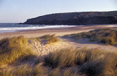 Sand dunes at Freshwater West Pembrokeshire South Wales - Paul Box - 14-07-2002