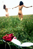 Running naked through a field. - Paul Box - 2000s,2004,a,ACE,bodies,body,culture,dance,dancer,dancers,dancing,DRUG,drugs,FEMALE,field,fields,flower,flowering,flowers,free,freedom,Frolic,Frolicking,Frolics,hippies,hippy,in,INDEPENDENT,LFL leisur