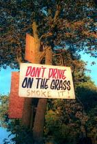 Don't drive on the Grass, smoke it sign, Glastonbury Festival. - Paul Box - 14-07-2001